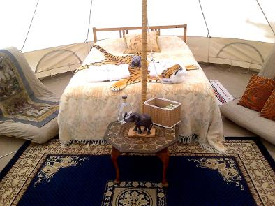 Exotic Bell tent glamping, Dorset glampsite, Dorset Country Holidays, glamping uk, yurt glamping